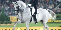 Blue Hors Matiné Retires From Competition to be Broodmare (con ...