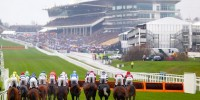 When is Cheltenham Festival 2021? Dates and where you can get tickets -  Birmingham Live