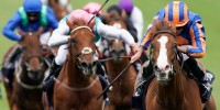 Guineas heroine Love and Royal Ascot star Frankly Darling lock ...