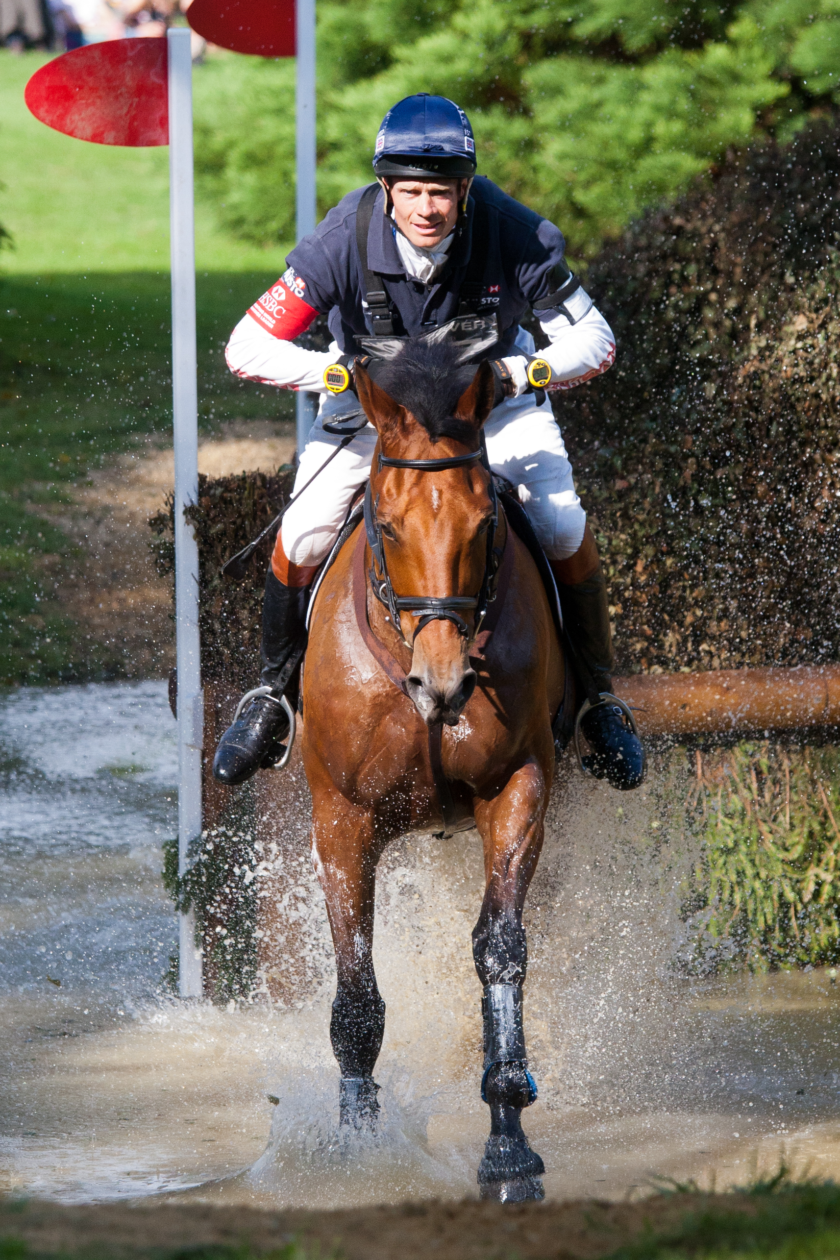 William Fox Pitt  / NEUF DE COEURS