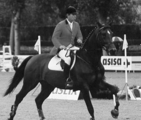 Luis Álvarez Cervera /  MAESTRO