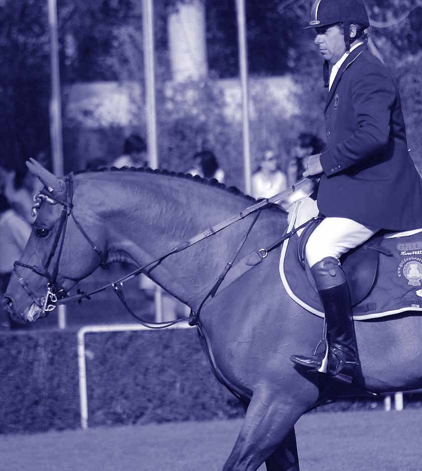 Nick Skelton / ARKO