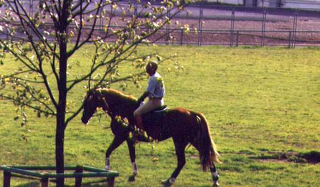 Enrique Sarasola en la cuarentena de Aachen 2000 para los JJ.OO de Sydney