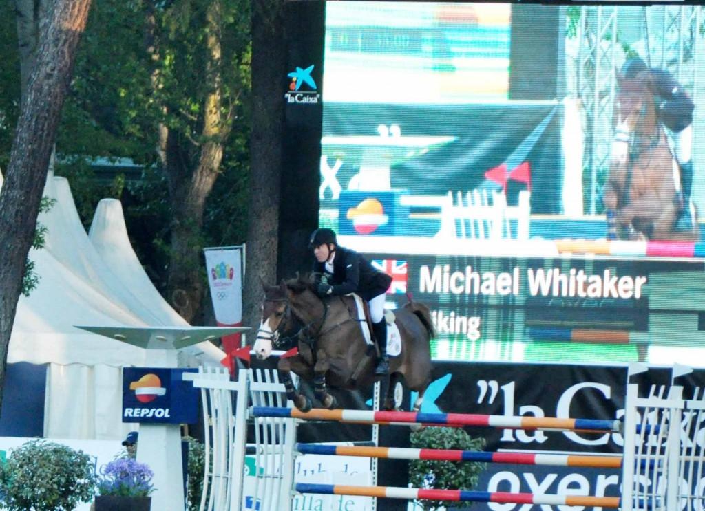 Michael Whitaker / VIKING