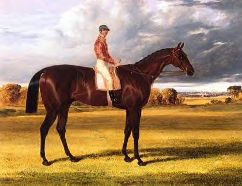 AMATO ganador del Derby Stakes en  1838  pintado por John Frederiks Hering Sr