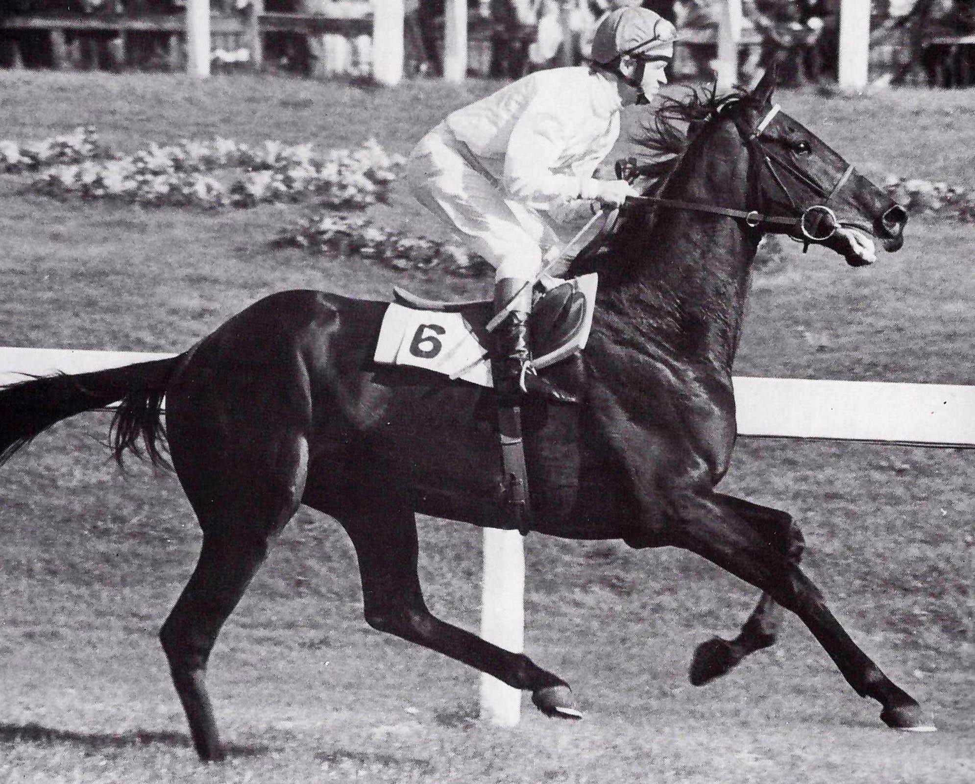 ILE DE BOURBON ganador del King George VI en 1978 montado por J. Reid