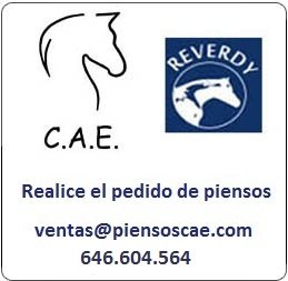 PIENSO RECOMENDADO. Logotipo realizado por globalcaballos.com