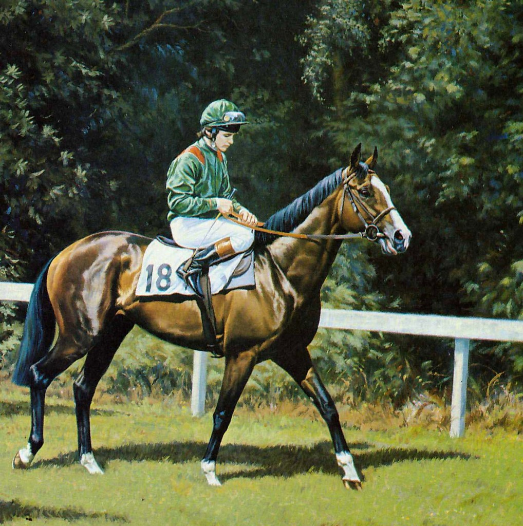 SHERGAR con W. Swinburn. Pintura de Roy Miller