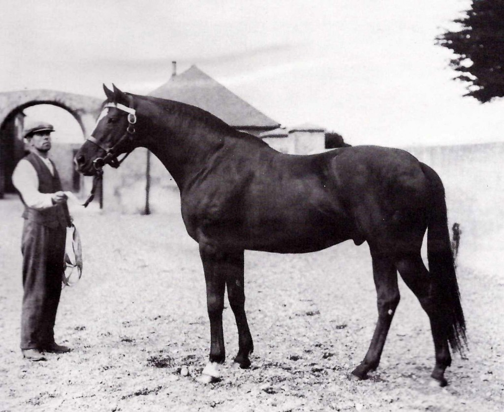 BLANDFORD, hijo de SWINFORD