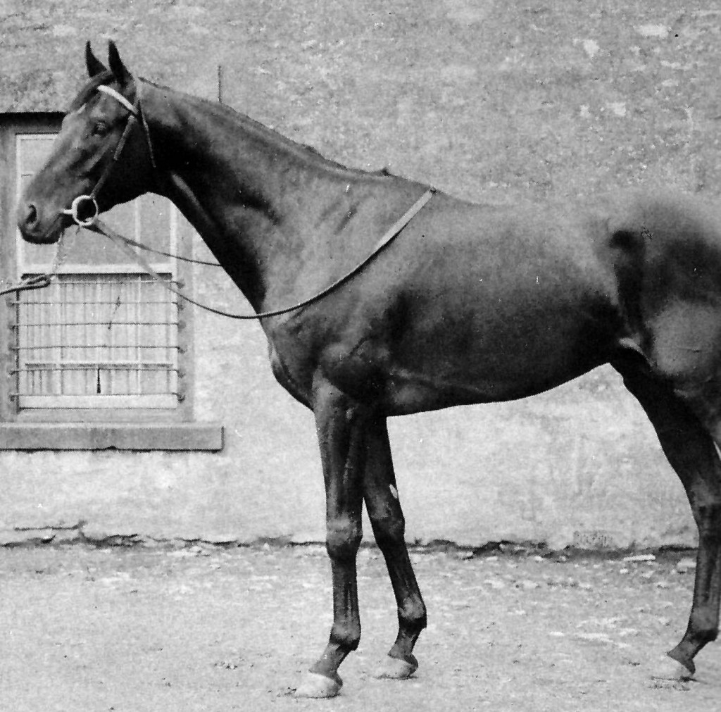DANTE ganador del Derby en 1945