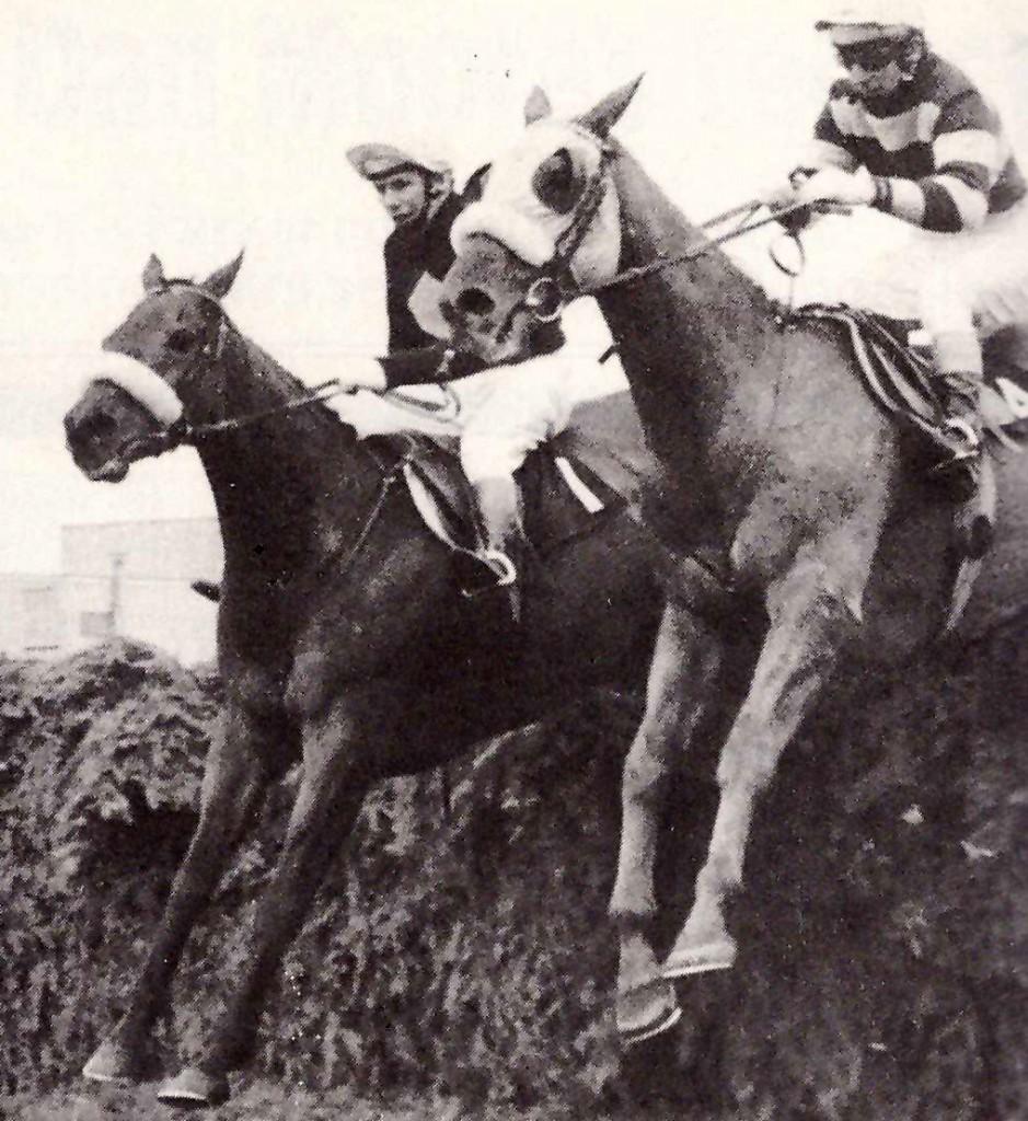 RED RUN y LERSCARGOT en el Gran National 1975