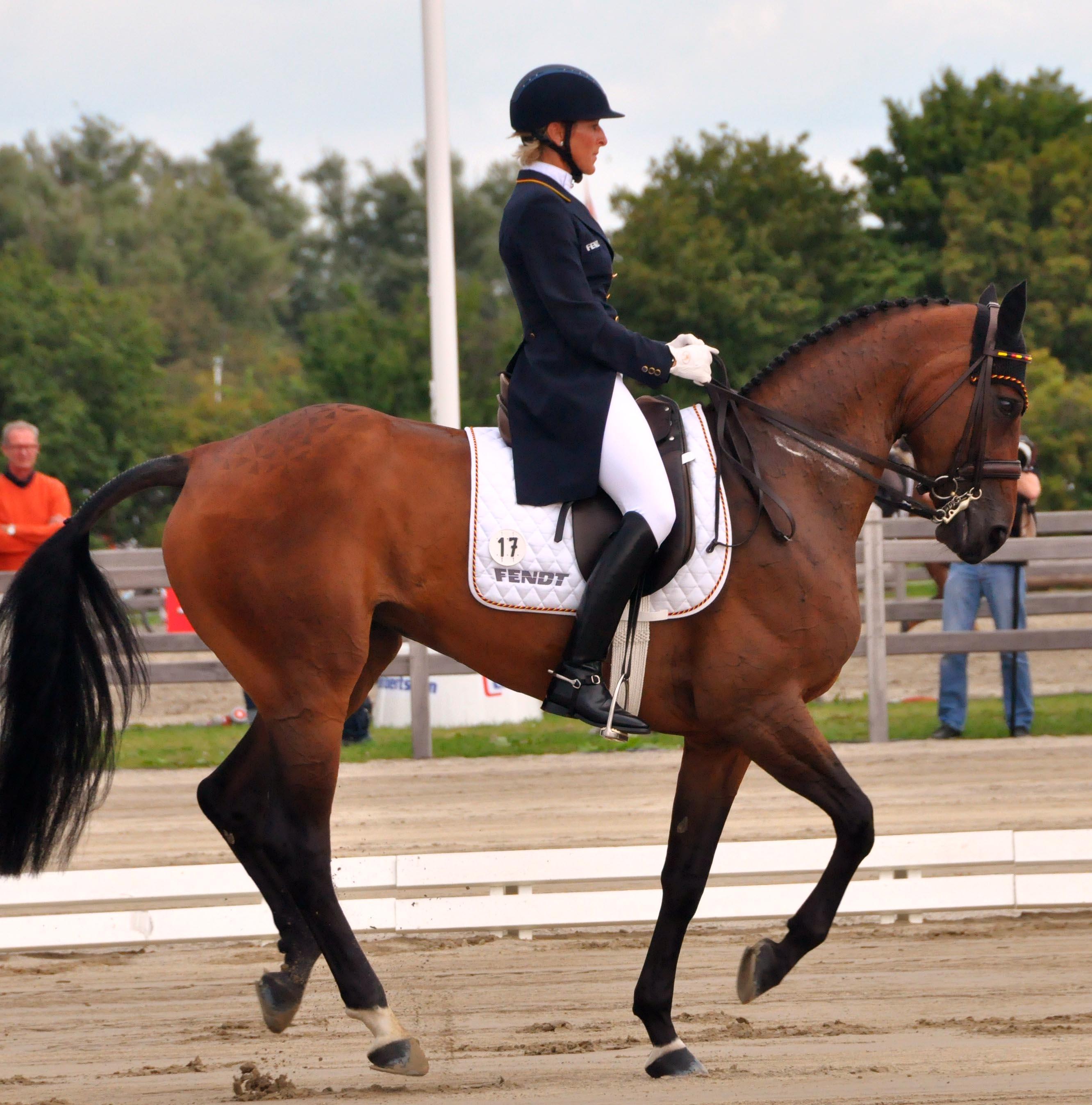 Ingrid Klimke / ESCADA