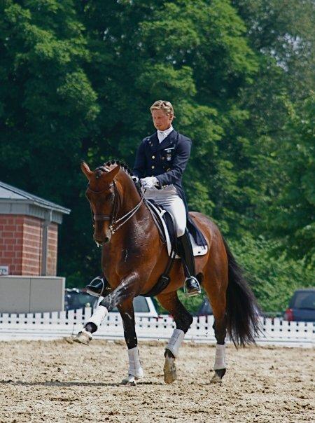 Patrik Ittel. Horses Ozzy Fiends