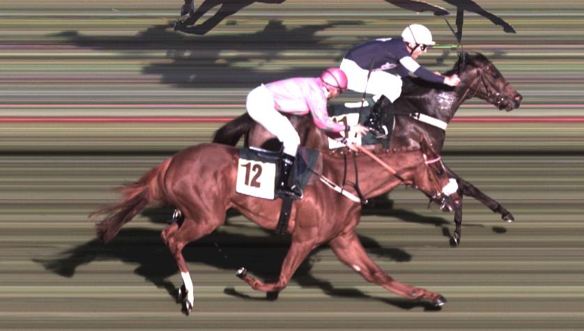 Final de la carrera. Foto de la web del H. de la Zarzuela