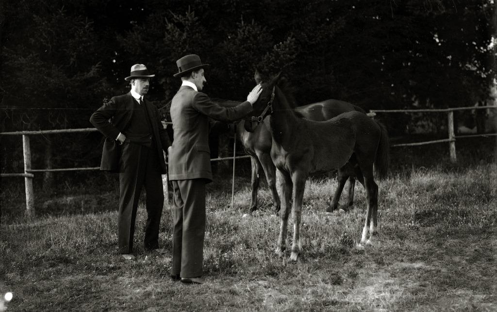 El Rey Alfonso XIII en Lore Toki