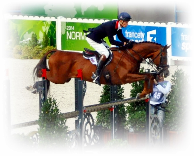 William Fox-Pitt con CHILLI MORNING