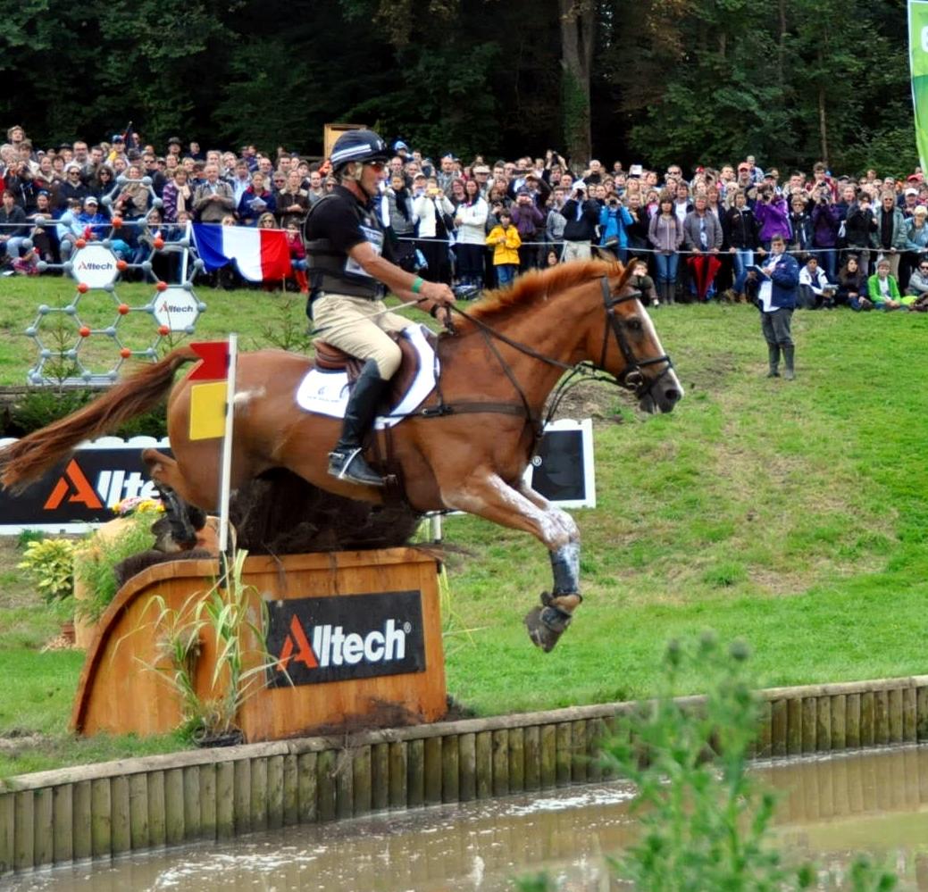NEREO caballo nacional español competidor en los JEM 2014 con Andrew Nicholson