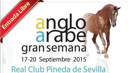 Gran-Semana-Anglo-arabe-2015