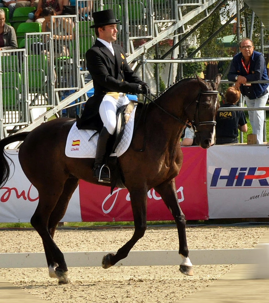 Carlos Díaz con IBERÓN. Fue en mejor conjunto españo el el Cto. de Europa de Lunmühlen. El caballo con 8 años hizo el cross y el salto en piosta sin falta