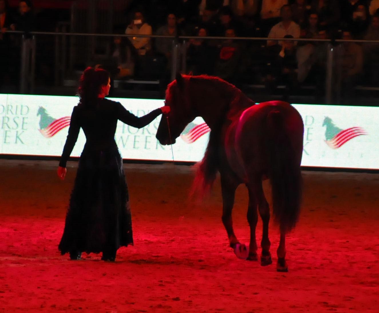 Espectáculo en el Madrid Horse Week 2014