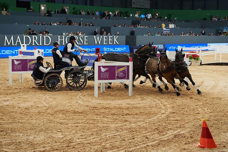 Boyd Exell. Foto de equestrian Australia