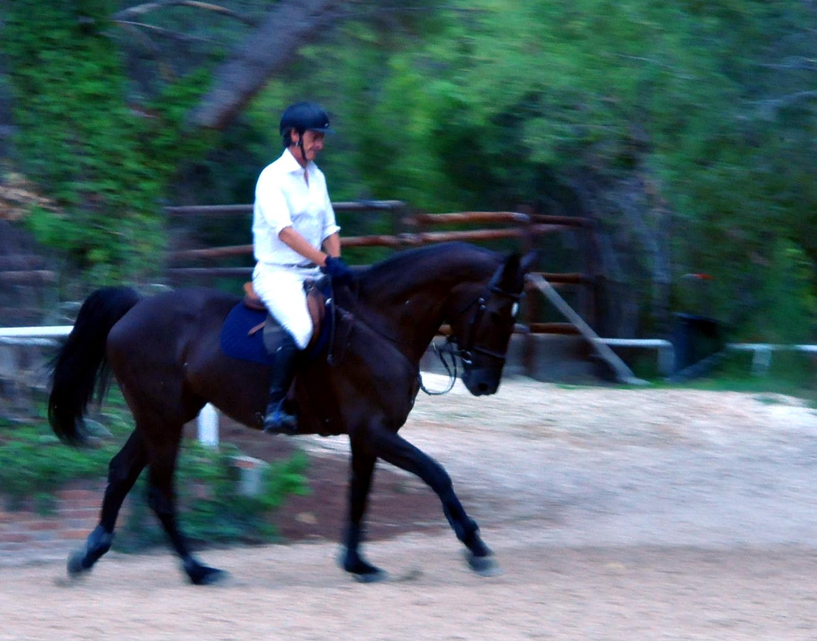 NENA (CDE) con Fernando Urrutia